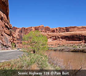 canyonlands-Utah